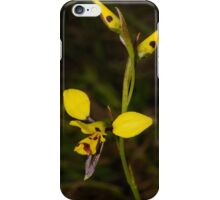 Tiger Orchids. iPhone Case/Skin