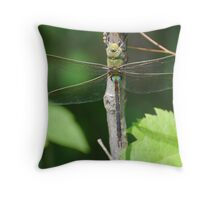 """ Dragon Fly - Green Darner "" Throw Pillow"