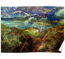 Wilsons Promontory Collage Poster