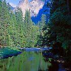 Mountain Pool, Yosemite by Priscilla Turner