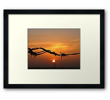 Sun through the wire Framed Print