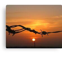 Sun through the wire Canvas Print