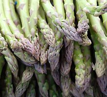 Asparagus by Miriam Gordon