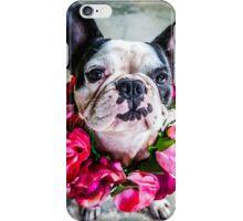 Frieda The French Bulldog  iPhone Case/Skin