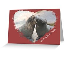 Give Us A Kiss (Seal Valentine)  Greeting Card