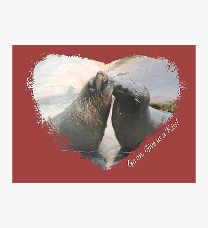 Give Us A Kiss (Seal Valentine)  Photographic Print