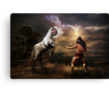 Difference of Opinion Canvas Print