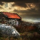 The Storehouse by David Robinson
