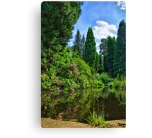 Reflective Nature Canvas Print