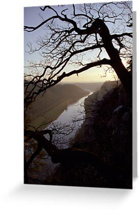 River Elbe, view from Bastei, Germany by Lenka