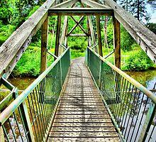 Bedgeburys Bridge by duroo