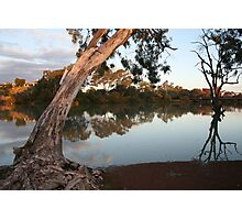 Renmark views Photographic Print