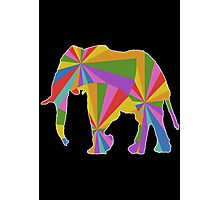 Colorful Elephant Photographic Print