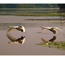 Double Landing Photographic Print