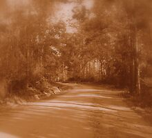 The Long And Winding Road, Leads Me To Your Door. by Angi Baker