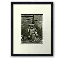 Neglected Teddy Framed Print