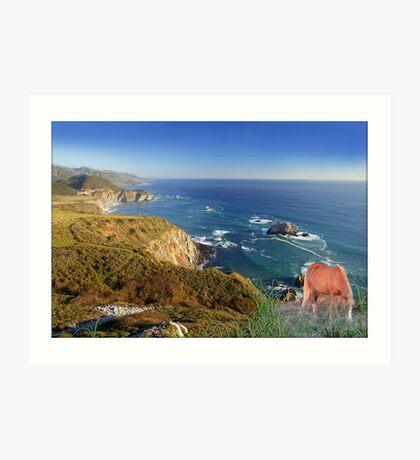 907-Oceanside Wild Art Print