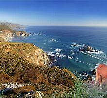 907-Oceanside Wild by George W Banks