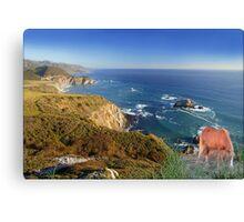 907-Oceanside Wild Canvas Print