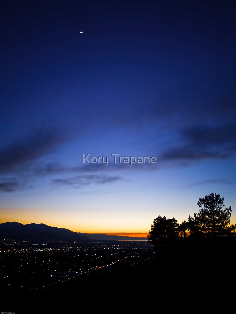 The Moon Looks Down by Kory Trapane