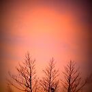 Winter sunrise in Kalgoorlie by Ashli Zis