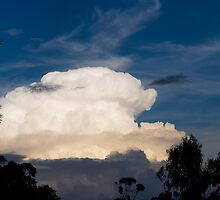 Storm Cell Cloud by Guyzimijz