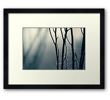 Moonlit Lattice Framed Print