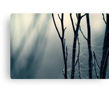 Moonlit Lattice Canvas Print