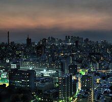 Blade Runner Tokyo by Alfie Goodrich
