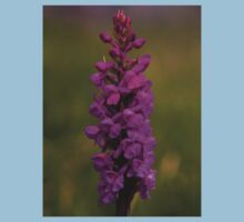 Fragrant Orchid, Dun Eochla, Inishmore Kids Clothes