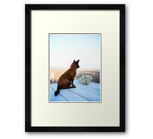 Tong looks out to sea .. Framed Print