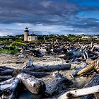 Coquille River Driftwood by Thom Zehrfeld
