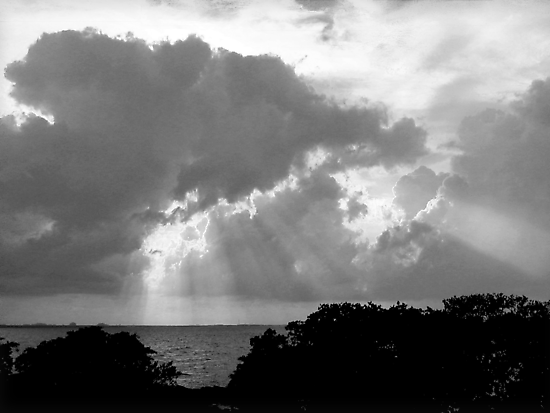 Sunset in Black and White by Ginny Schmidt