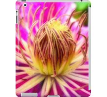 Dr Ruppell iPad Case/Skin