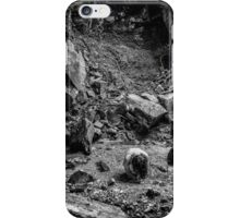 Intimations of Immortality iPhone Case/Skin