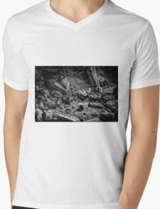 Intimations of Immortality Mens V-Neck T-Shirt
