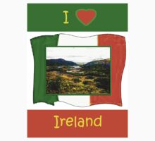 jGibney I Love Ireland 1999 Kerry Lake District Kerry Ireland Flag T-Shirt wb The MUSEUM Red Bubble Gifts by TheMUSEUM