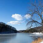 Dow Lake in Winter by Lynn Gedeon