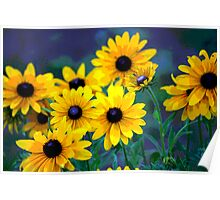 Earthly Daisy Poster