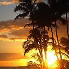 Hawaiian sunset from the Sheraton Hotel, usa by chord0