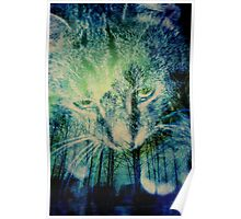 WaiFai and Forest Dual Exposure 2 Poster