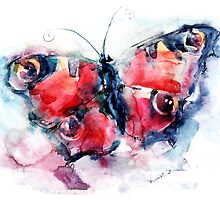 Butterfly painted in watercolors by Abundzu