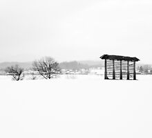 Winter landscape in black and white by Ian Middleton