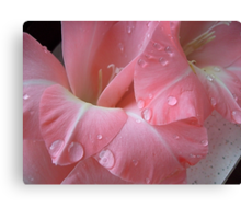 Decorated with droplets Canvas Print