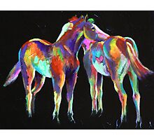 Little Paint Ponies Photographic Print