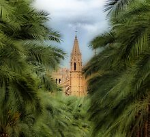 Palma - La Seu Cathedral by A90Six