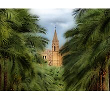 Palma - La Seu Cathedral Photographic Print