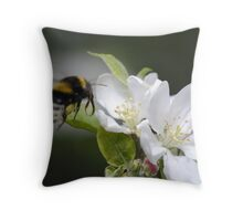 Bumble Bee Hovering over apple tree flowers Throw Pillow