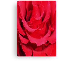 Beautiful Close Up Of Red Rose Petals Canvas Print