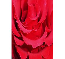 Beautiful Close Up Of Red Rose Petals Photographic Print